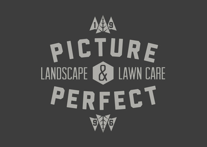 Logo Design for Picture Perfect