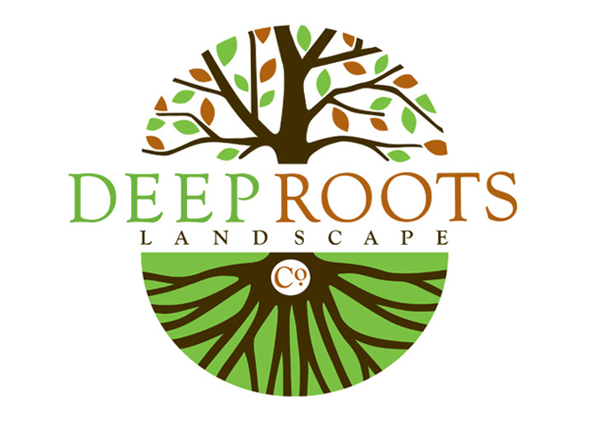 Logo Design, Branding for Deep Roots